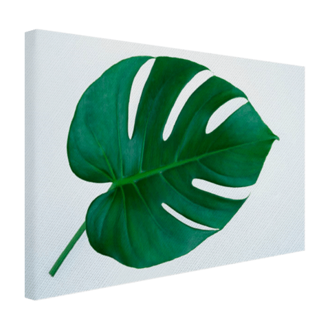 Botanische print op canvas