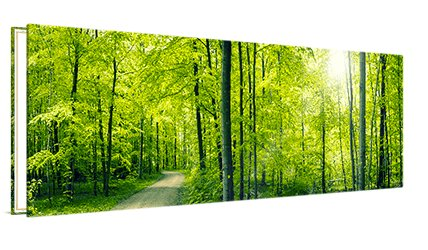 Panorama op canvas 200x100