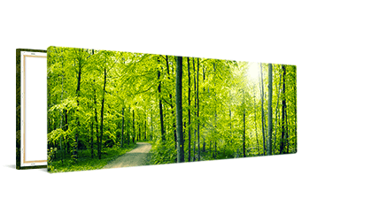 Panorama op canvas 40x20