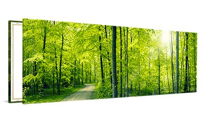 Panorama op canvas 120x60