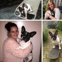 Meisje en hond collage op canvas