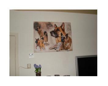 Klantreactie hond op canvas