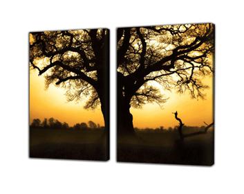 Tweeluik op canvas