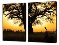 Meerluik foto op canvas