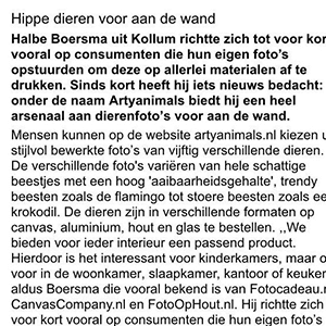 Interview Friesch Dagblad ArtyAnimals