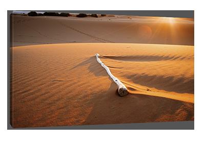 Woestijn canvasprint